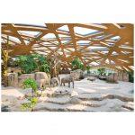 La coque en forme libre de la maison des éléphants du zoo de Zurich est réalisé pour sa structure primaire en CLT – image : Grossmann / Zoo Zurich / Leno